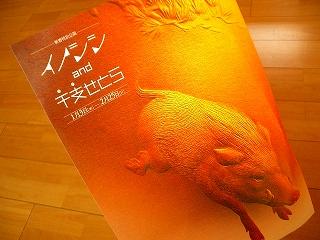 福井県立博物館
